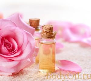 Роза и ее эфирное масло